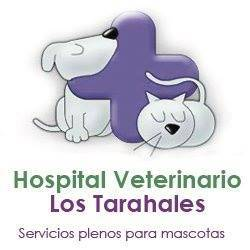 Hospital Veterinarios Los Tarahales